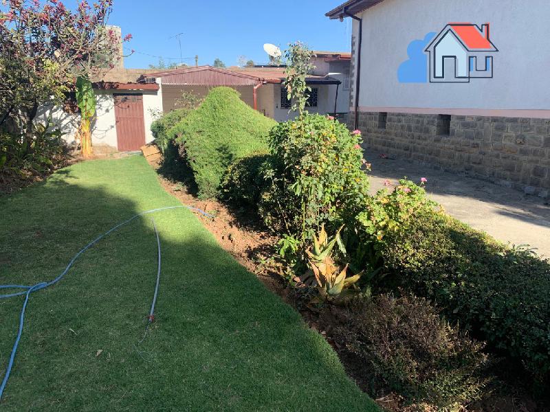 Villa House With Big Garden